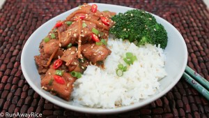 Delicious Ginger Chicken -- so easy to make and so tasty!