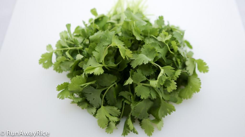 A Guide to Vietnamese Herbs: Cilantro | runawayrice.com