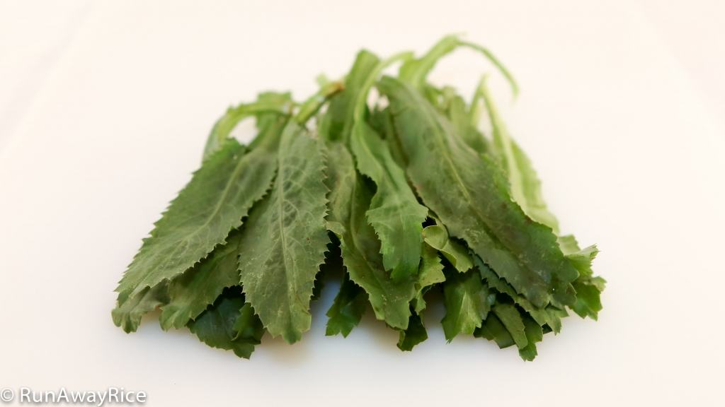 A Guide to Vietnamese Herbs: Sawtooth Herb | runawayrice.com