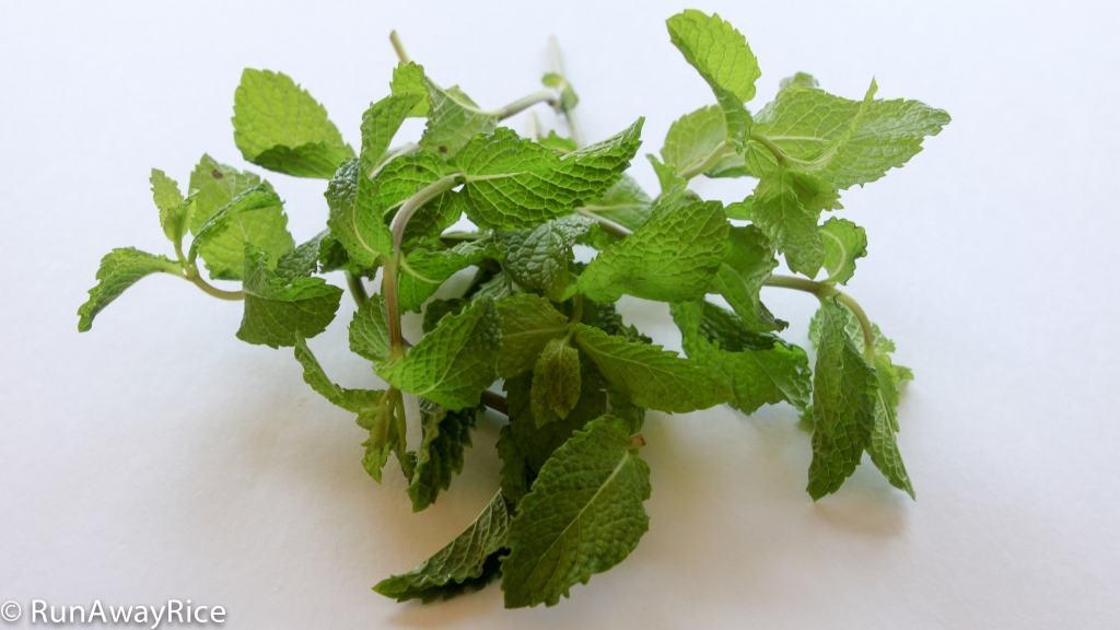 A Guide to Vietnamese Herbs: Spearmint | runawayrice.com