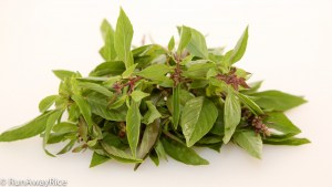 A Guide to Vietnamese Herbs: Thai Basil | runawayrice.com