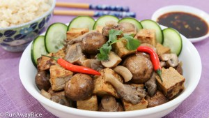 Vegetarian's Delight: Braised Tofu and Mushrooms | recipe from runwayrice.com