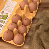 Pasteurizing eggs is a must-do process to safely eat uncooked eggs | runawayrice.com