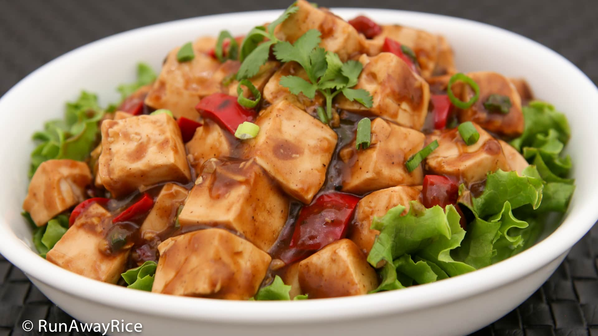 Tofu in Black Bean Sauce (Dau Hu Sot Tuong Den) - savory, saucey and so delish! | recipe from runawayrice.com