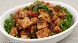 Tofu in Black Bean Sauce (Dau Hu Sot Tuong Den) - Make in 30 minutes or less! | recipe from runawayrice.com