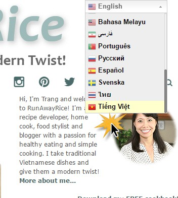 New Website Features - Translate RunAwayRice Recipes to Multiple Languages including Vietnamese. | runawayrice.com