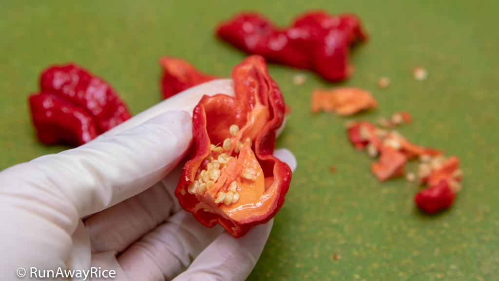 Ghost Pepper / Bhut Jolokia - Dare to Try this Insanely Hot Pepper? | runawayrice.com