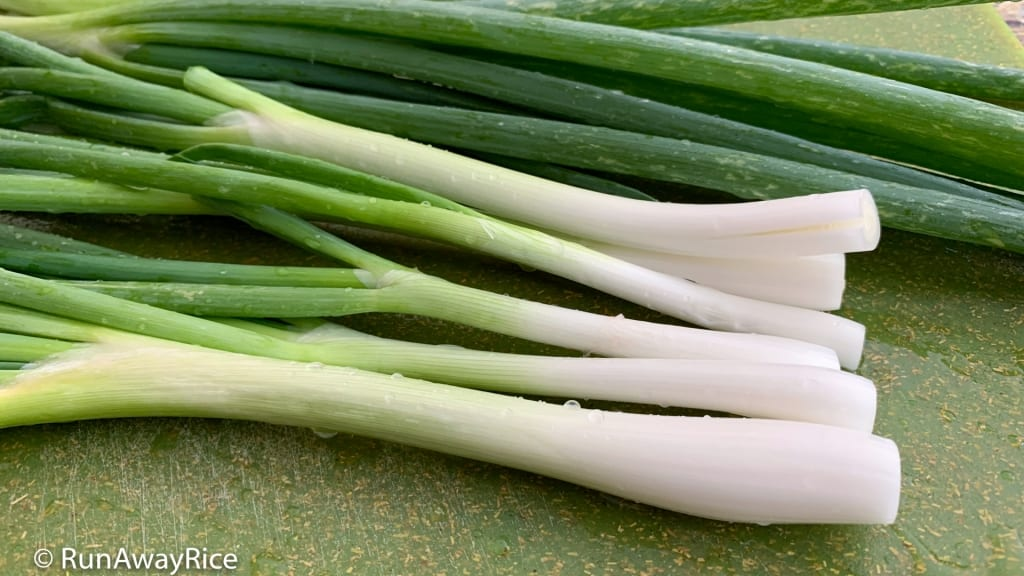 How To Freeze Green Onions - Save Money, No Waste! | runawayrice.com