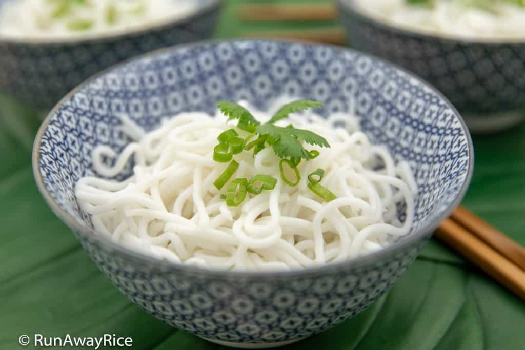 Fresh Rice Noodle / Rice Vermicelli (Bun Tuoi) - Homemade and Healthy! | recipe from runawayrice.com