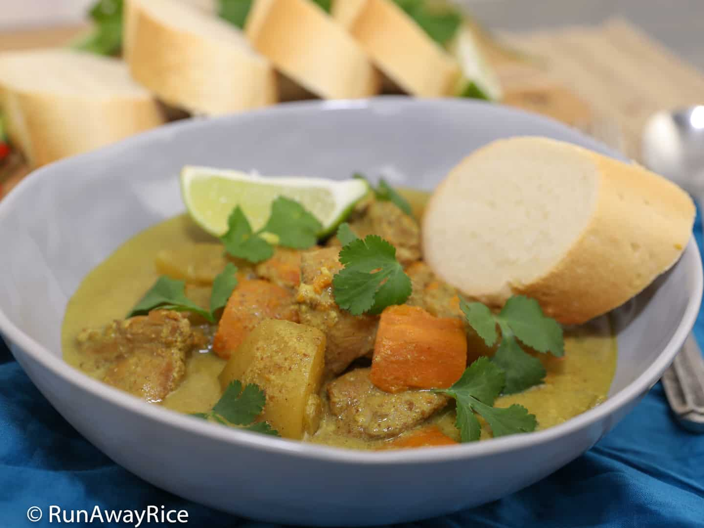 Instant Pot Chicken Curry (Ca Ri Ga) - Yummy Vietnamese-Style Curry Made Easy in the Instant Pot | recipe from runawayrice.com
