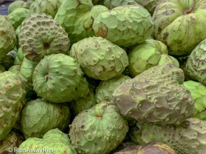 Fruits for Lunar New Year - Cherimoya | runawayrice.com